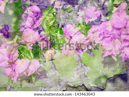 bougainvillea - styled picture with patina texture - stock photo