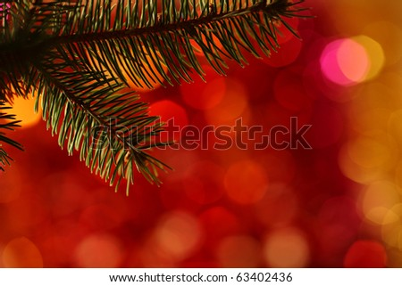 Bough of Christmas tree against blurred light background - stock photo