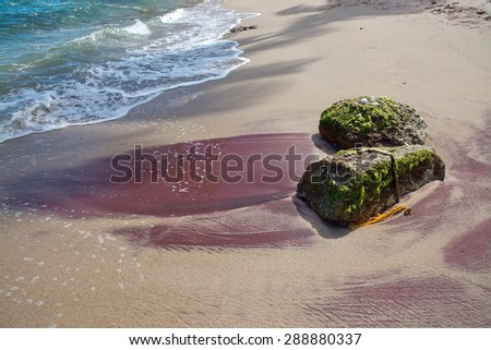 Boulders with green moss in red heavy mineral and golden sand, Southern Province, Sri Lanka, Asia.  - stock photo