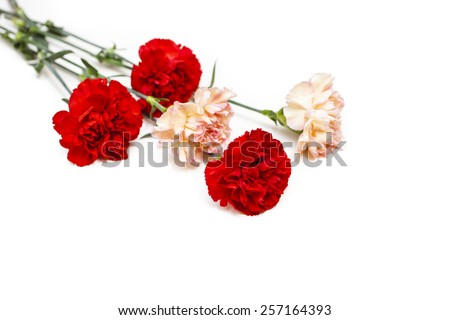 bouquet from carnations on a white background, selective focus - stock photo