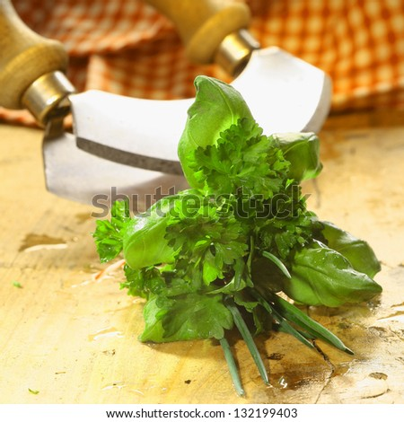 Bouquet garni of fresh herbs including basil, crinkly leaf parsley and chives lying on a wooden table in front of a chopping blade - stock photo