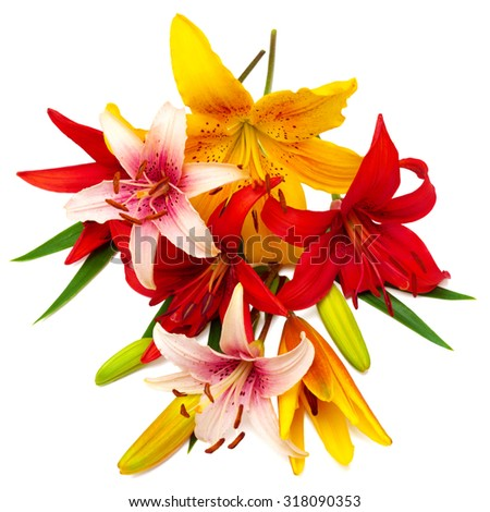 Bouquet of beautiful flowers lilies. The holiday greeting card colors. - stock photo