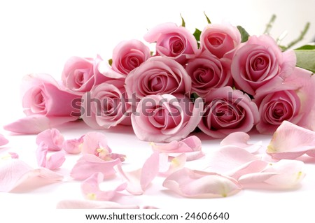 bouquet of beautiful flowers with petals - stock photo