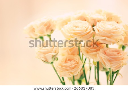 Bouquet of beautiful fresh roses on curtains background - stock photo