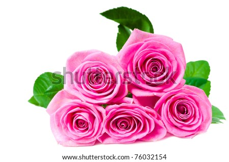 bouquet of beautiful pink roses on white - stock photo