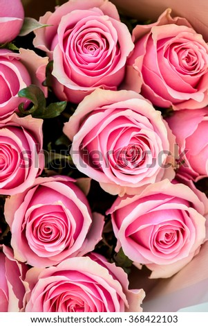 Bouquet of Beautiful Pink Roses, shallow DOF, selective focus - stock photo