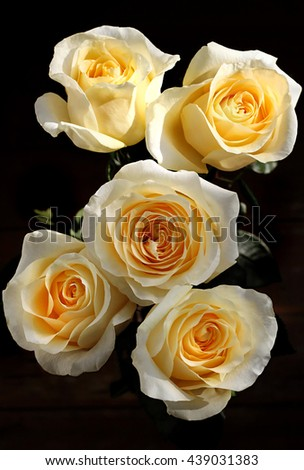 Bouquet of beautiful tea roses in a vase - stock photo
