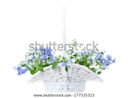 Bouquet of blue spring flowers in white basket isolated on white - stock photo