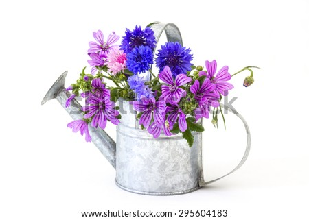 bouquet of bright wildflowers in watering can, isolated on white - stock photo