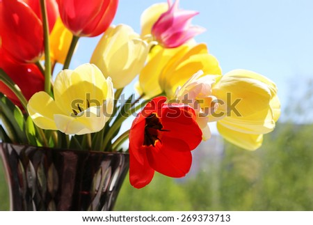 Bouquet of colorful spring tulips in a vase on a background of a window - stock photo