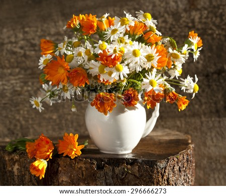 bouquet of daisies in a retro style - stock photo