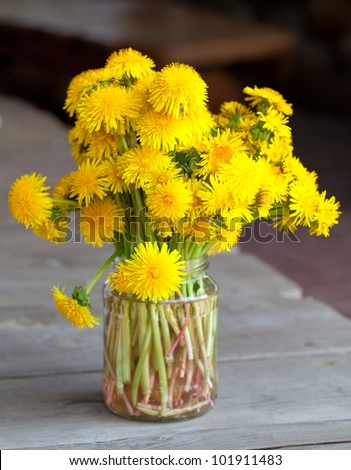 bouquet of dandelions on wooden table - stock photo