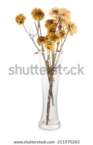 bouquet of dry flowers in a vase isolated on white - stock photo