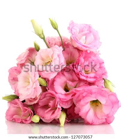 bouquet of eustoma flowers, isolated on white - stock photo