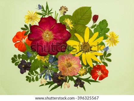 Bouquet of flowers on a light background. Pressed, dried rosehip flowers, topinambur, geranium, violet, dandelion, clover and lupine. Picture from dry flowers.  Pressed floristry, oshibana. - stock photo