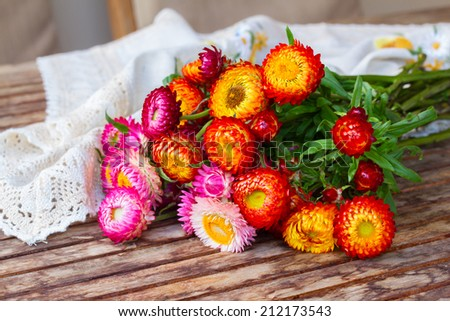 Bouquet of fresh Everlasting flowers bouquet  on wooden table - stock photo
