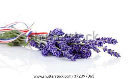 Bouquet of lavender flowers over white background - stock photo