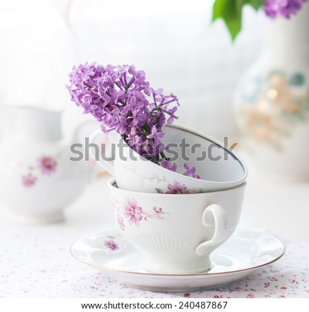 Bouquet of lilac flower on white background - stock photo