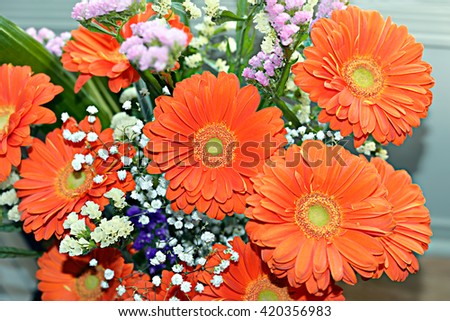 Bouquet of Orange Gerberas - stock photo