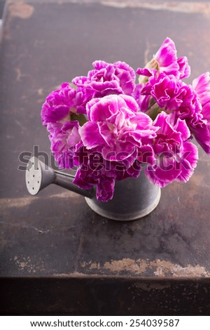 Bouquet of pink carnations in a small watering can - stock photo
