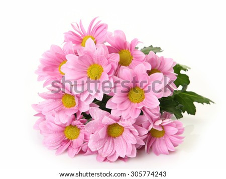 bouquet of pink flowers - stock photo