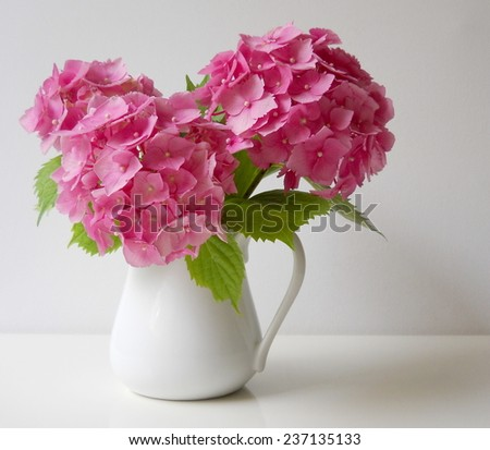 Bouquet of pink hydrangea flowers in a vase. Floral still life with hortensia. - stock photo