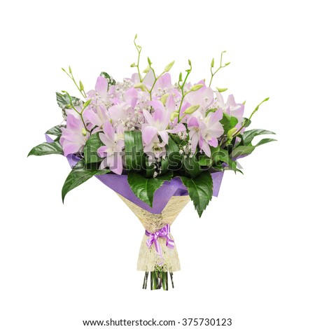 Bouquet of pink orchids, isolated on the white - stock photo