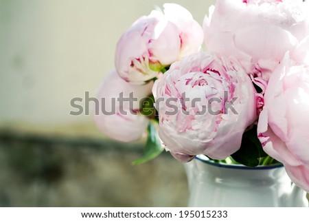Bouquet of pink peonies in vase, toned - stock photo