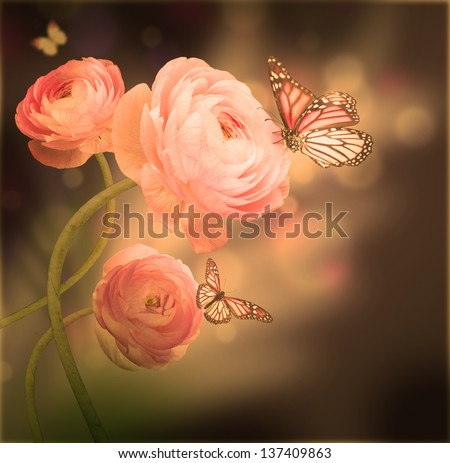 Bouquet of pink roses against a dark background  butterfly - stock photo