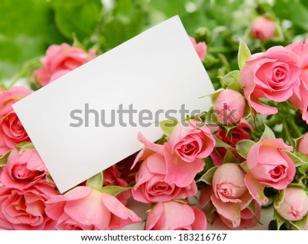 bouquet of pink roses and greeting card - stock photo