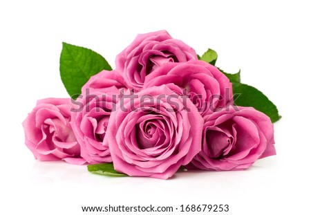 bouquet of pink roses isolated on white - stock photo