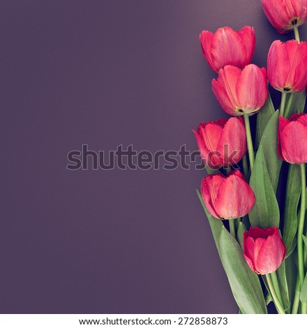 Bouquet of pink tulips on colored background with space for message. Mother's Day and spring background - stock photo