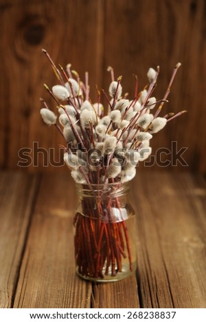 Bouquet of pussy willow twigs in glass jar on wooden background selective focus vertical - stock photo