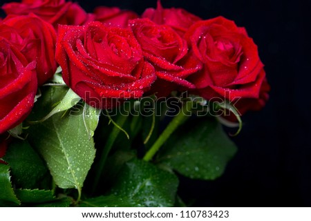 bouquet of red roses on black background. selective focus - stock photo
