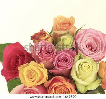 Bouquet of roses. - stock photo