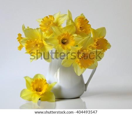 Bouquet of spring yellow daffodils flowers in a vase. Floral still life with bouquet of yellow narcissus flowers in a vase. Flower fine art photography. - stock photo
