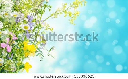 Bouquet of summer meadow flowers  with blue bokeh and copy space,  floral background - stock photo