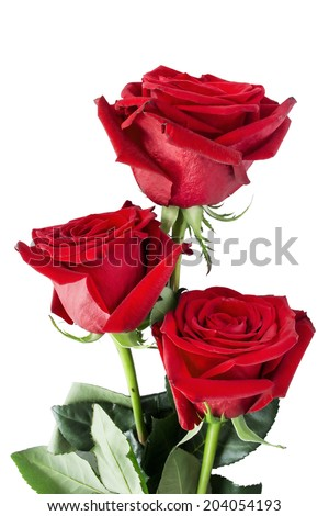 Bouquet of three red roses isolated over white - stock photo