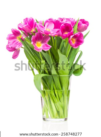 Bouquet of tulips on white background - stock photo