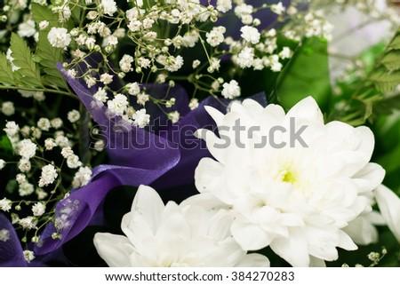bouquet of white chrysanthemums closeup - stock photo