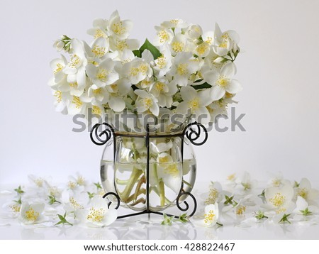 Bouquet of white jasmine flowers in a vase. Romantic floral still life with white jasmine flowers and petals. Mock orange jasmine - Philadephus flowers. Home flower decoration. - stock photo