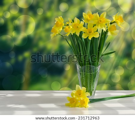 Bouquet of yellow daffodils in a glass vase on a white table on the background of green garden - stock photo