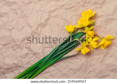 bouquet of yellow daffodils on crumpled paper with space for text - stock photo
