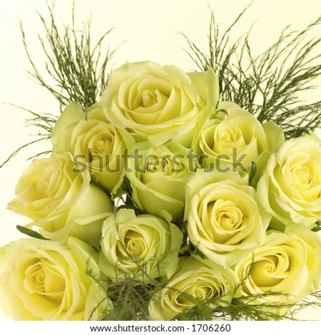 Bouquet of yellow roses. - stock photo
