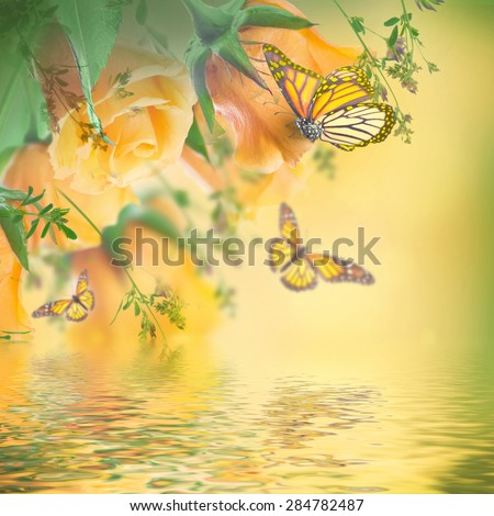 Bouquet of yellow roses, butterfly - stock photo