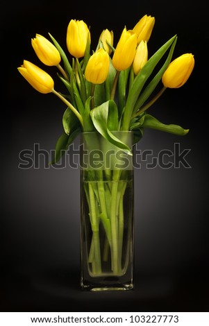 Bouquet of yellow tulips in glass vase on black background - stock photo