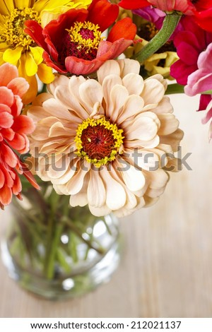 Bouquet of zinnia flowers - stock photo