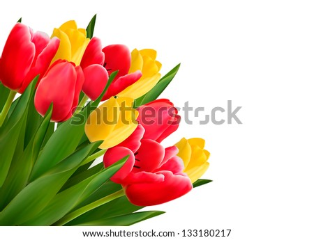Bouquet with red and yellow flowers in white background. Raster version - stock photo