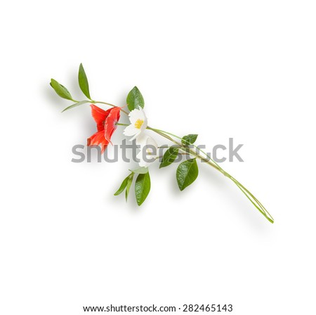Bouquet with red poppy and white anemones isolated on white - stock photo
