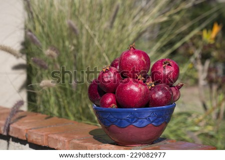 bowl full of pomegranates with blurred outdoor background, horizontal crop - stock photo